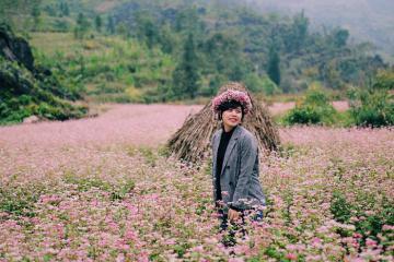 Tháng 10 rồi, đi đâu để check-in trọn vẻ đẹp mùa tam giác mạch Hà Giang?