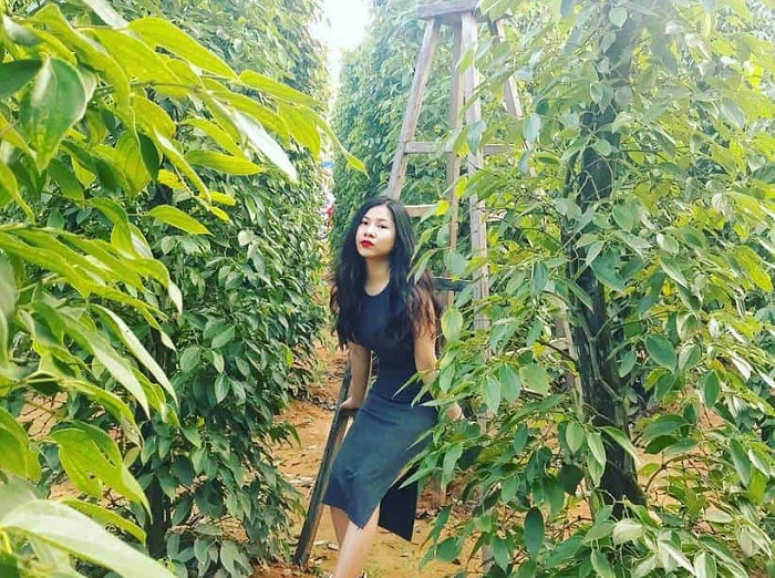 Nice place to take pictures in Phu Quoc - Phu Quoc pepper garden