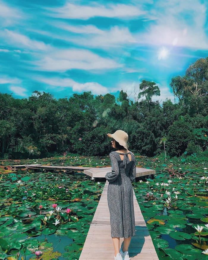 Check in the frescoed village of Cao Lanh - Dong Thap is the land of lotus and rice