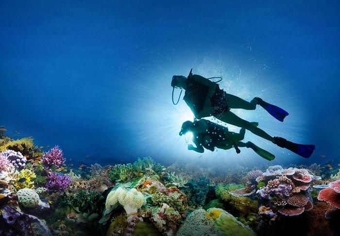 Lặn biển ngắm san hô ở Phú Quốc - hình thức bình dưỡng khí