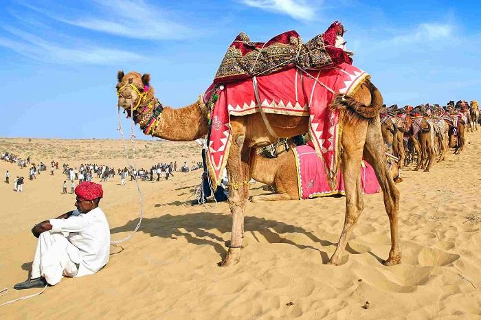Lễ hội lớn ở Ấn Độ- Lễ hội Pushkar Camel Fair