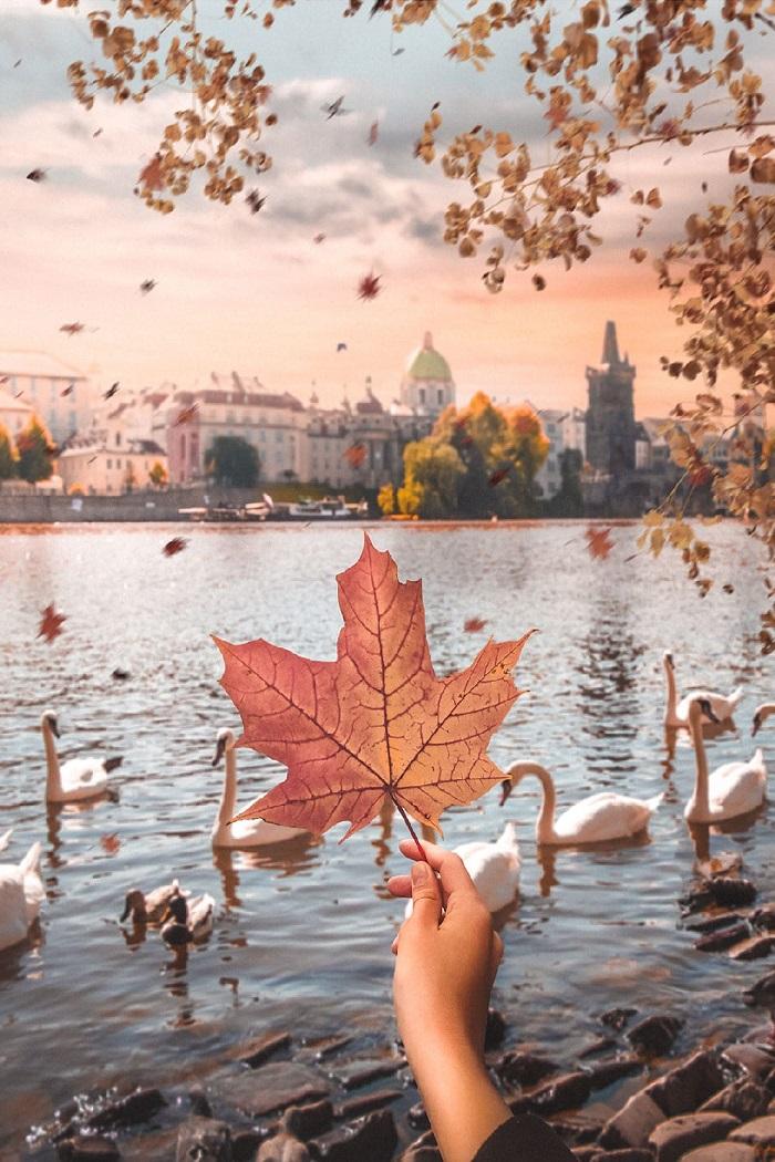 những nơi mùa thu đẹp nhất thế giới-Prague