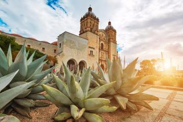 Trọn bộ kinh nghiệm du lịch Oaxaca - Mexico chi tiết từ A tới Z