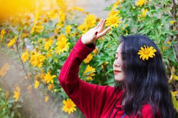 Kinh nghiệm săn mùa hoa dã quỳ Đà Lạt check in lãng mạn khó quên