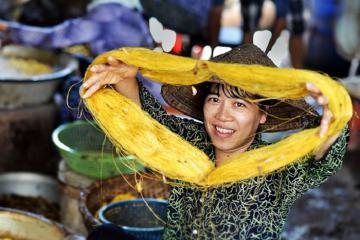 Vẻ đẹp duyên dáng của làng tơ Cổ Chất trên đất Thành Nam