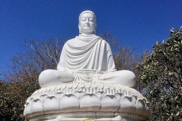 Đến Thích Ca Phật Đài Vũng Tàu ngắm tượng Phật 'siêu to khổng lồ'