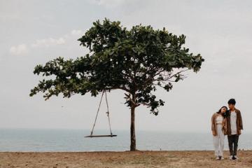 Sống ảo 'không góc chết' tại cây cô đơn ở Bình Thuận