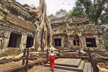 Vẻ đẹp của sự bí ẩn nơi đền Ta Prohm Campuchia