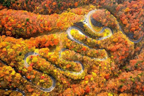 Đến cung đường 48 khúc cua ở Nhật tận hưởng mùa thu xứ Phù Tang mộng mơ