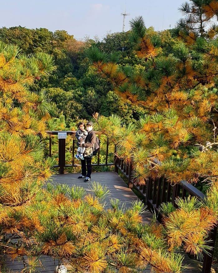 chilbo mountain - a poetic Korean tourist destination