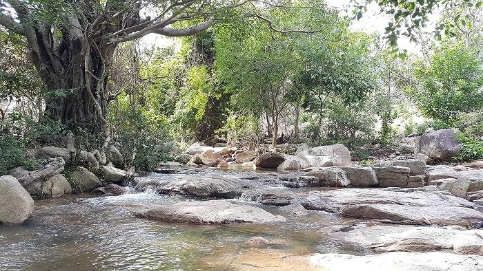 Giới thiệu về Suối Lồ Ồ Ninh Thuận