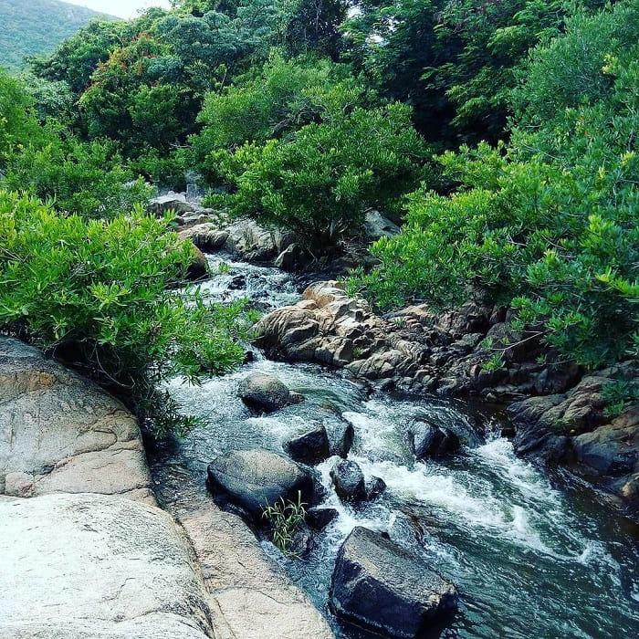 Khám phá Suối Lồ Ồ Ninh Thuận
