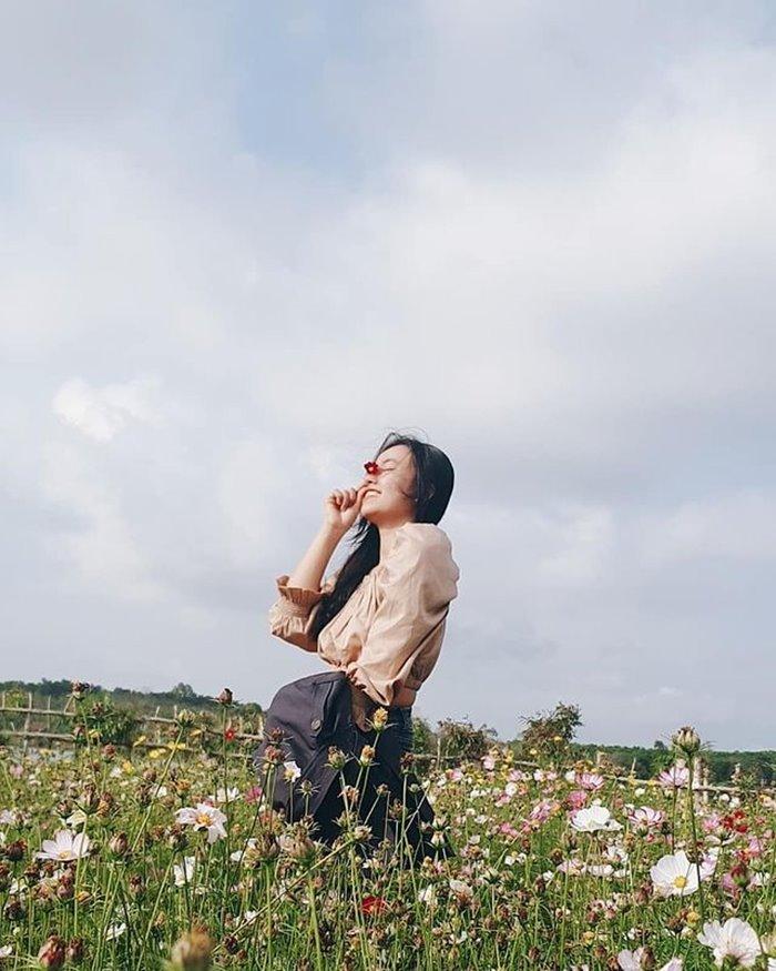 long van garden check-in point in Van Hoa plateau