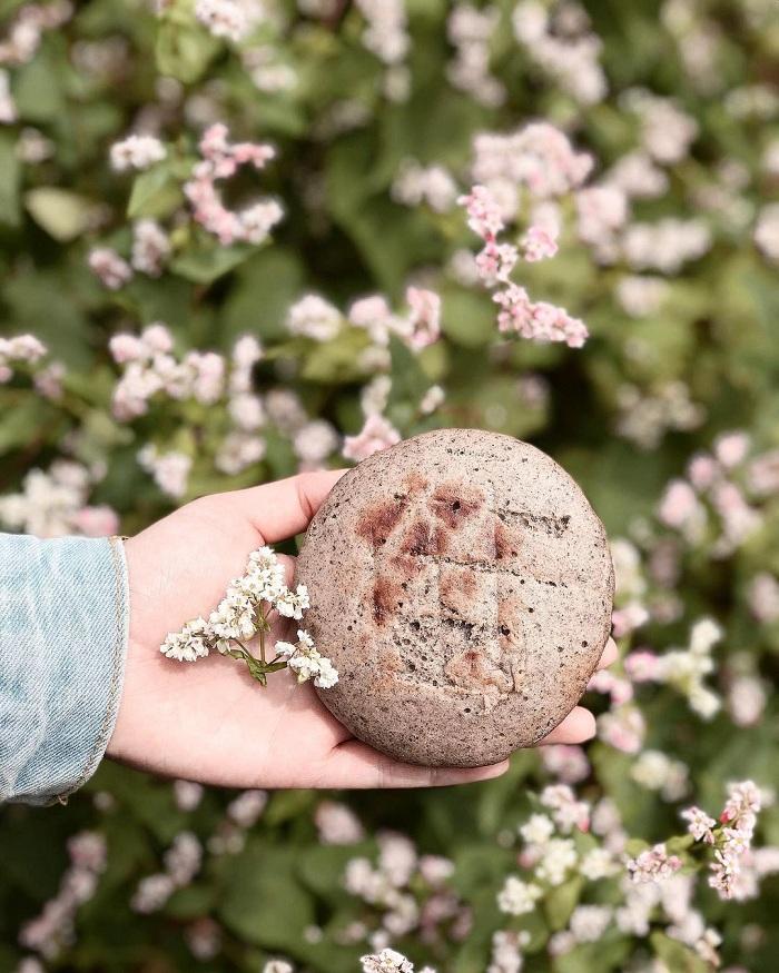 món ăn làm từ hoa tam giác mạch