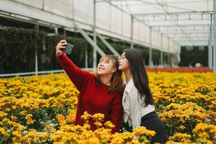 Vẻ rực rỡ của Vườn hoa Nhiệt Đới Mộc Châu
