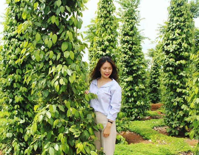 Check-in focus garden in Van Hoa Plateau
