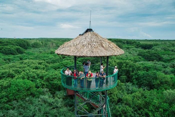 Khám phá khu dự trữ sinh quyển Cần Giờ - chốn bình yên xanh thẳm ngay tại Sài Gòn