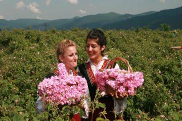 Kinh nghiệm du lịch Bulgaria, xứ sở của những đóa hồng