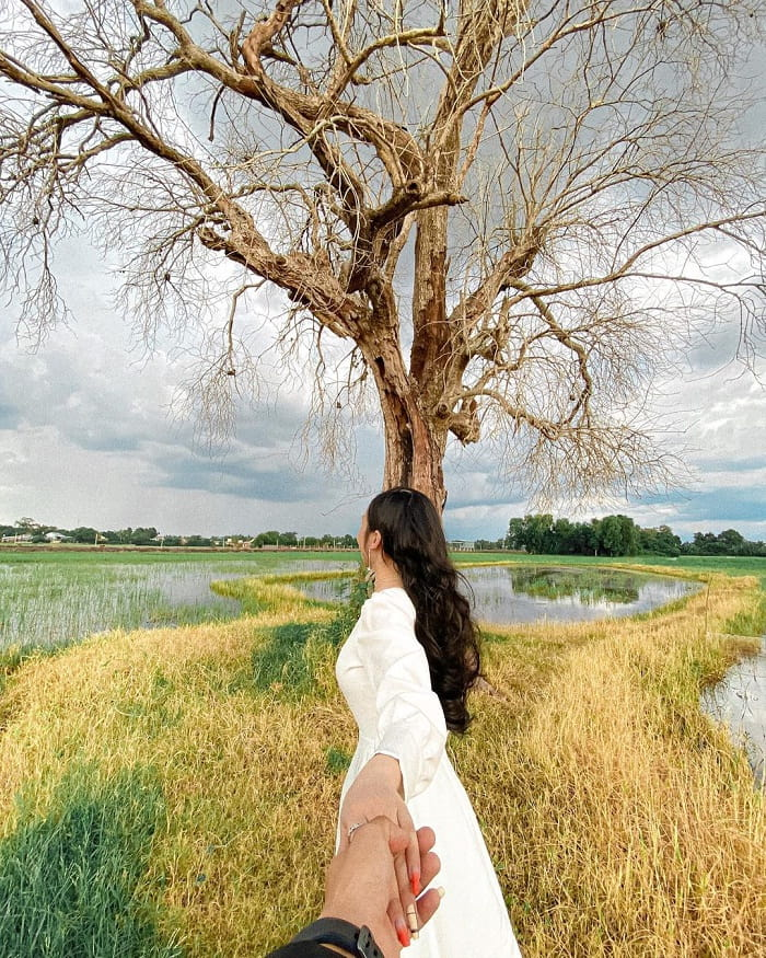 virtual life - attractive activities at lonely trees in Tay Ninh