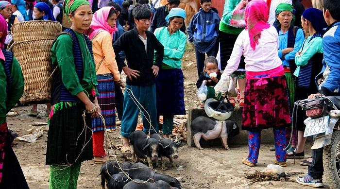 Rộn ràng chợ phiên Mèo Vạc - một trong những chợ phiên Hà Giang quy mô lớn nhất