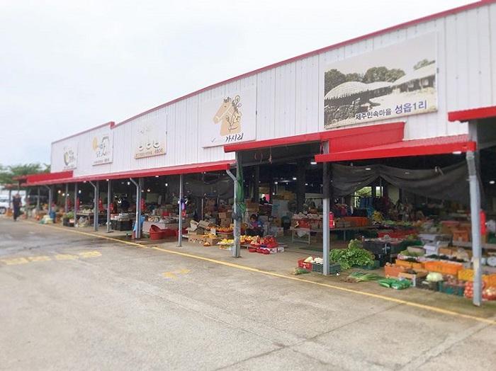 chợ truyền thống ở Jeju - chợ bình dân Pyoseon