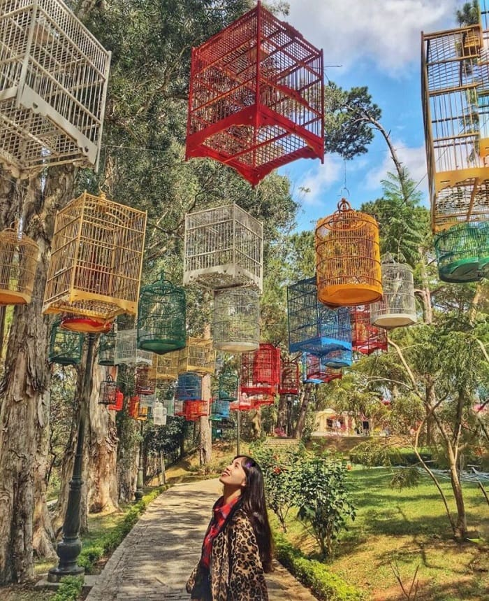 địa điểm du lịch Đức Trọng - khu du lịch sinh thái Đa Mê trong rừng