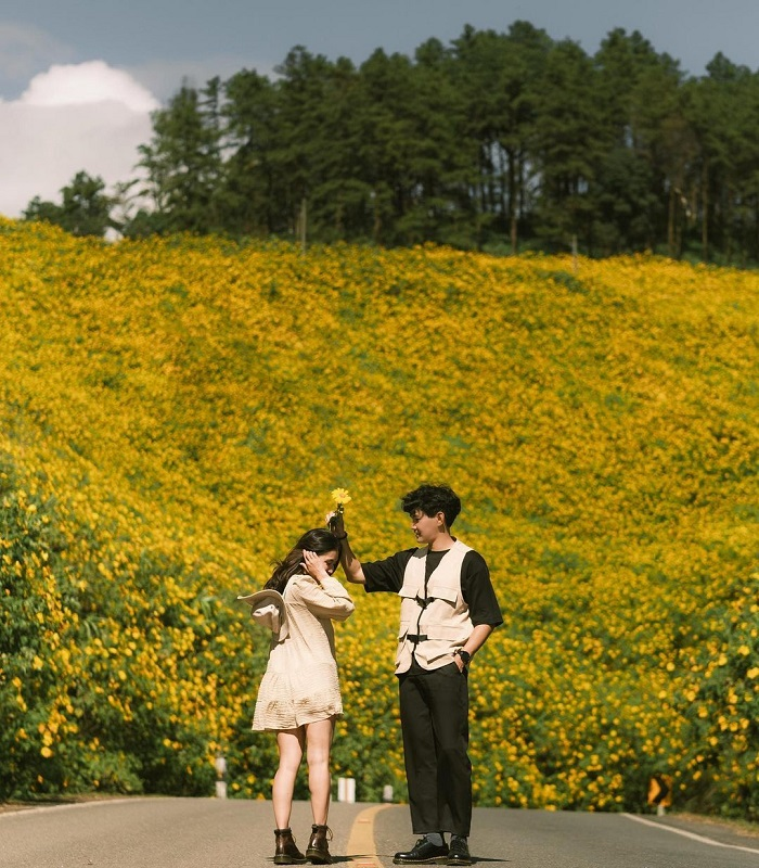 Wild sunflower hill in Thailand at Mae Hong Son_