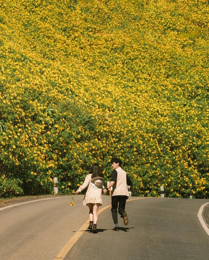 Wild sunflower hill in Thailand_totay168