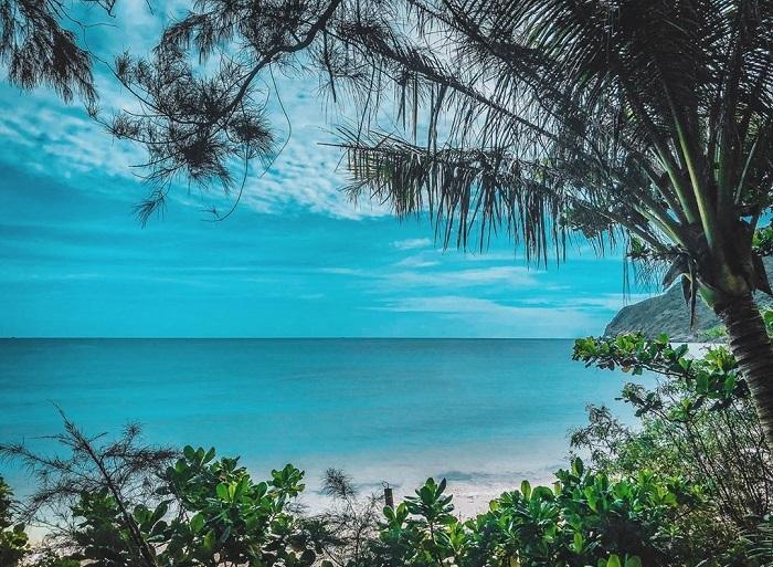 du lịch Côn Đảo từ Hà Nội - hòn Bảy Cạnh xanh mướt