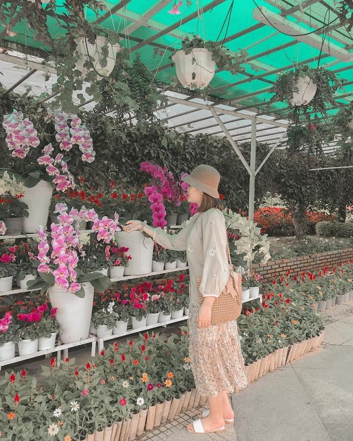 hoa tươi - đặc sản Đà Lạt mua làm quà ý nghĩa và ấn tượng nhất