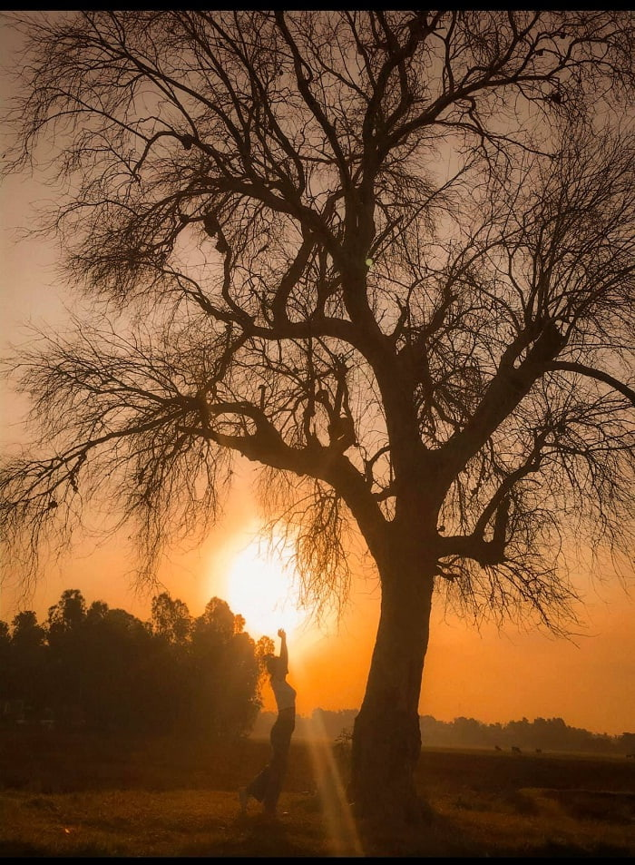 Sunset - Romantic scene at Lonely Tree in Tay Ninh