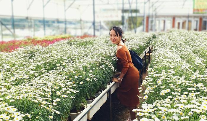 Kinh nghiệm tham quan làng hoa Vạn Thành - bao du khách say mê