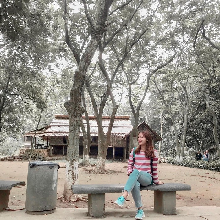 green trees - interesting space at the Vietnam Museum of Ethnology