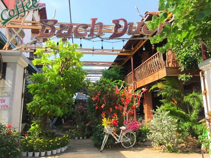Beautiful cafe in Phu Yen - Bach Duong cafe is filled with green colors