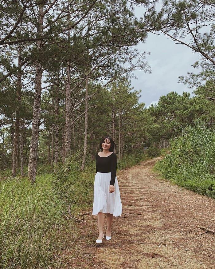rừng thông đẹp ở Đà Lạt - khung cảnh ngẩn ngơ ở hồ Tuyền Lâm
