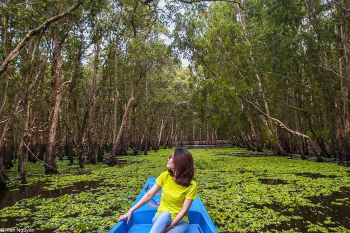 Travel Experience Tinh Bien An Giang - Virtual life at Tra Su Melaleuca Forest