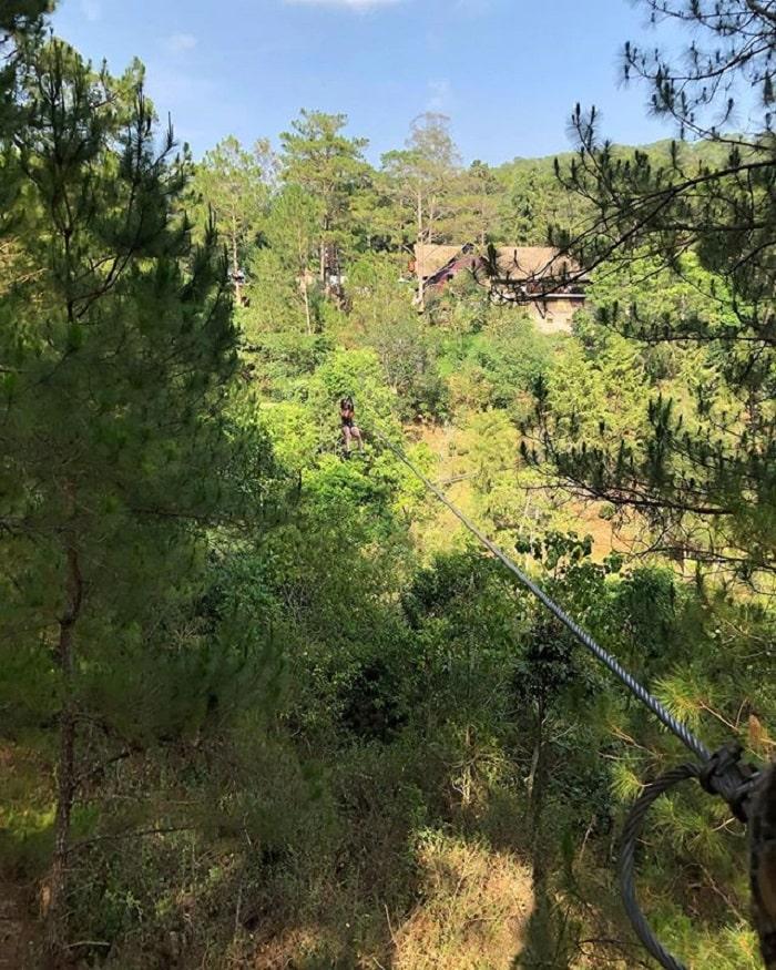 tham quan thác Datanla - đu dây xuyên qua rừng cây
