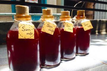 'Đột nhập' cơ sở sản xuất rượu sim Phú Quốc tìm hiểu quy trình và thưởng thức