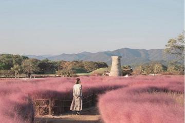 Những điều nên làm ở Gyeongju lắng đọng cùng cố đô cổ kính