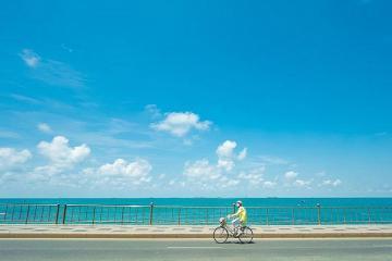 Tận hưởng một kỳ nghỉ tuyệt vời tại Bãi Dứa Vũng Tàu