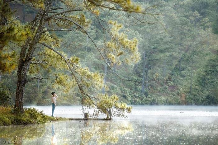 Dalat golden valley - charming lake
