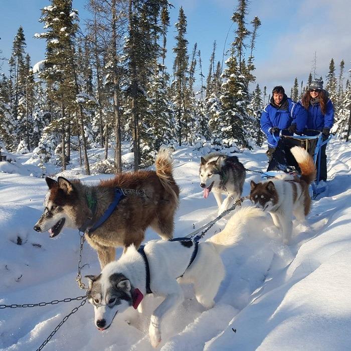 Du lịch Nga tháng 12 đi xe chó kéo