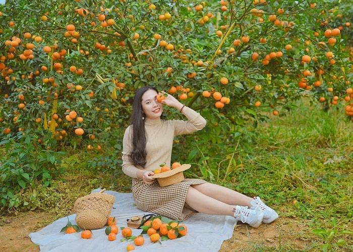 Mới lạ địa điểm check-in Vườn cam Đông Triều đẹp 'hút hồn' team mê sống ảo