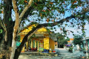 Check-in làng Đo Đo yên bình trong bộ phim Mắt Biếc