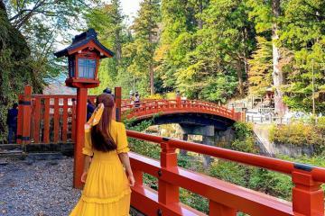 Đến Nikko đừng bỏ lỡ những trải nghiệm du lịch thú vị này!