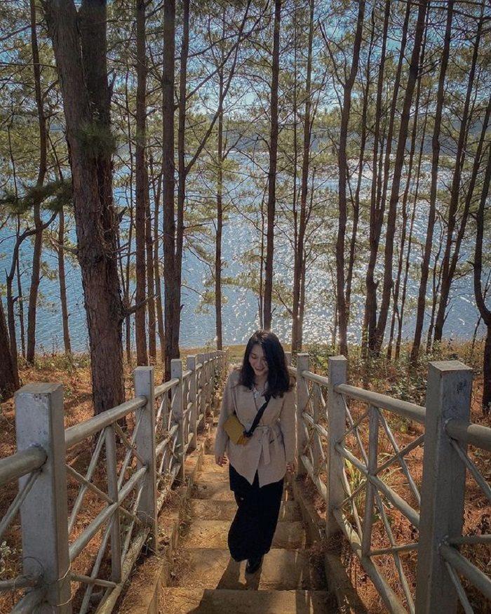 Biển Hồ điểm đến ở Pleiku đẹp nhất