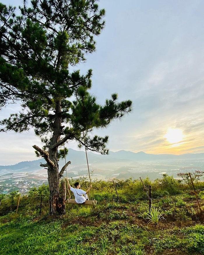 Lam Vien Plateau - discover wild beauty