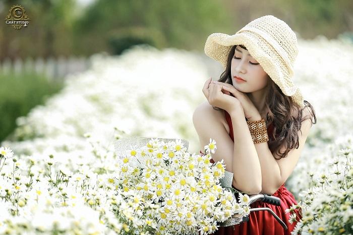 Check in the chrysanthemum flower garden at Long Bien Long Bien garden