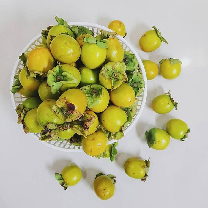 specialties bought by Lam Dong as gifts - crispy persimmons from Da Lat