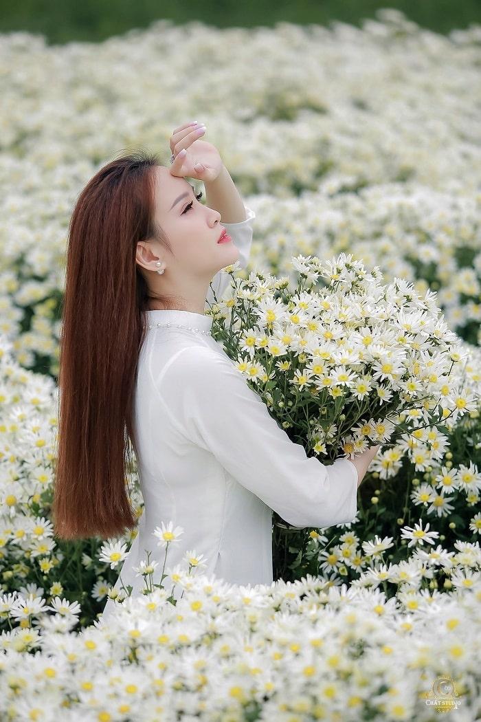 The chrysanthemum season is right at the Long Bien garden